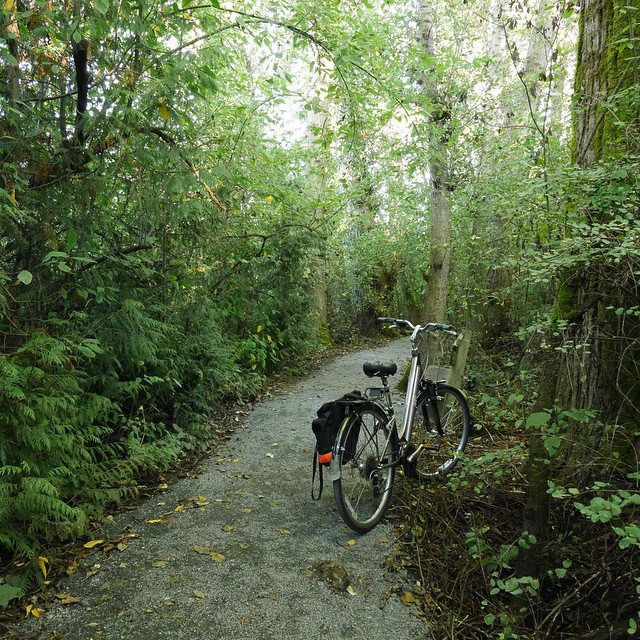My bike at Swan Lake recently, the best escape I can manage these days.