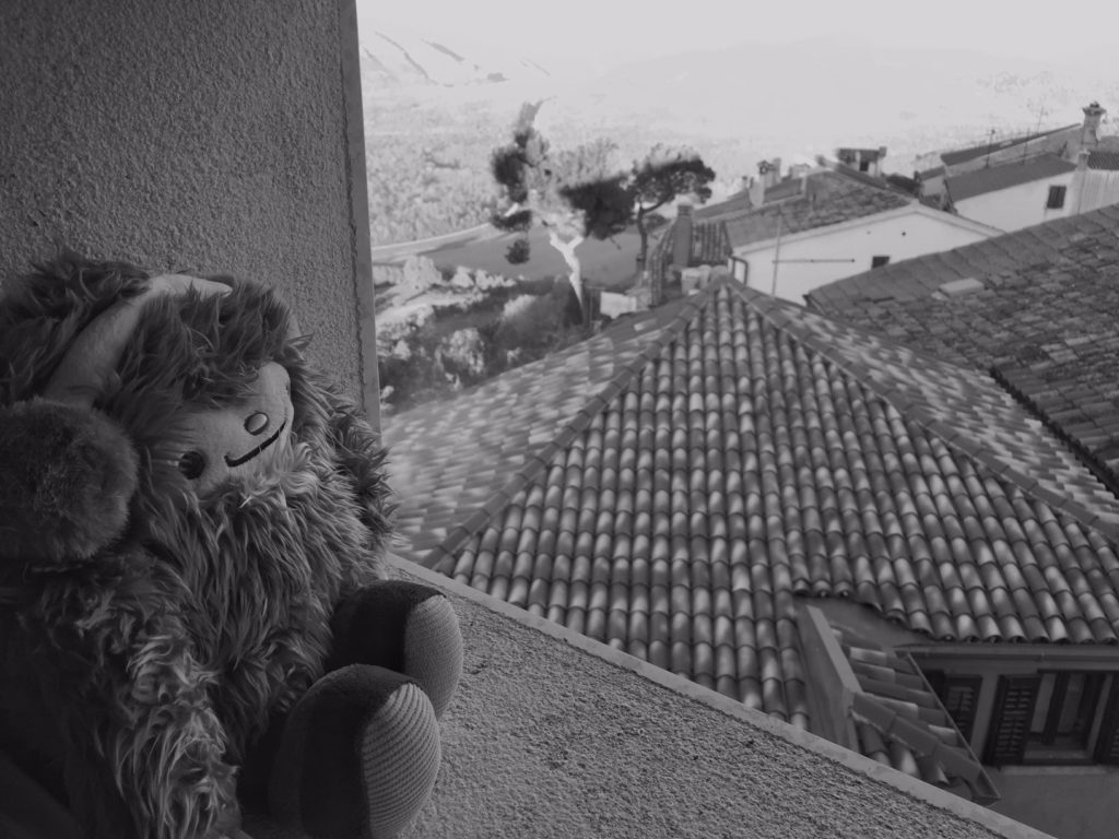 Quatchi takes in the sights in Motovun. This was when I first began realizing the magnitude of the adventure I had begun.