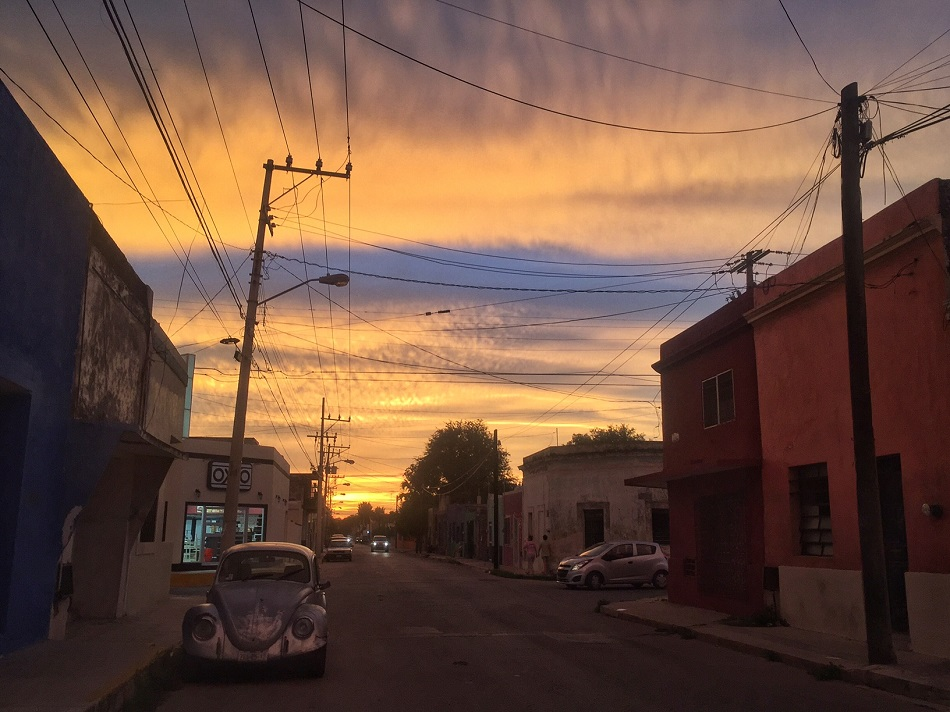 """I was lost in work recently and looked up and the backyard was orange. Not """"a bit of orange sunlight,"""" but everything had actually become orange. I ran outside and caught this view. Sometimes, just stopping gives us amazing moments, you know?"""